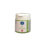 DZ ProDigest para la salud digestiva en palomas. Tratamiento de la diarrea en palomas